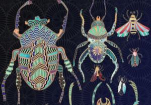 beetles to butterflies